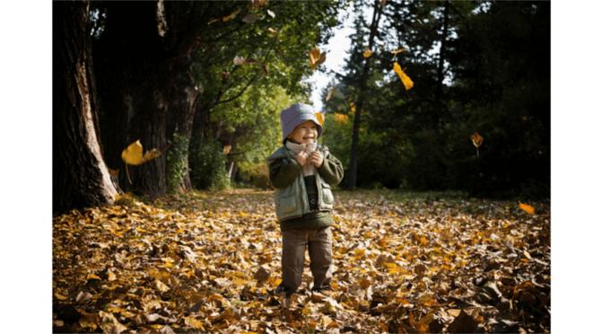 Az ősz, mint egy szunyókálni induló nagypapa takarója